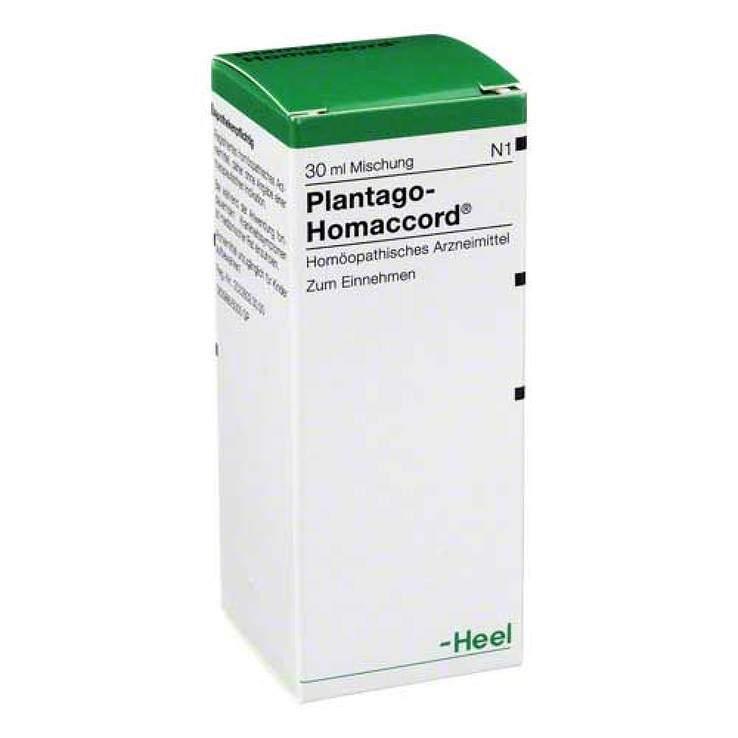 Plantago-Homaccord® 30ml Tropf.