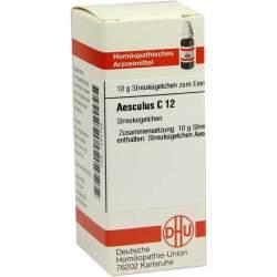 Aesculus C12 DHU 10g Glob.