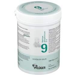 Biochemie Nr.9 Natrium phosph. D6 Pflüger 1000 Tbl.