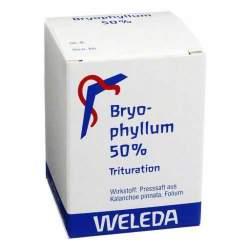 Bryophyllum 50% Weleda Pulv. 50g
