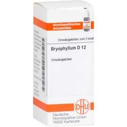 Bryophyllum D12 DHU Glob. 10g