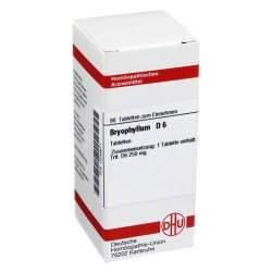 Bryophyllum D6 DHU 80 Tbl.