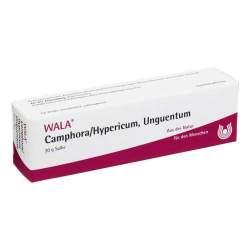 Camphora/Hypericum Unguentum Wala, Salbe 30g