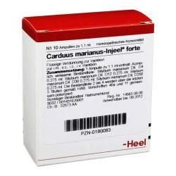 Carduus marianus Injeel forte 10 Amp.