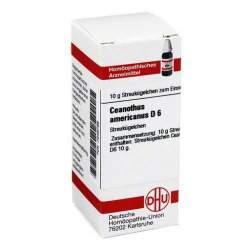 Ceanothus americanus D6 DHU Glob. 10 g