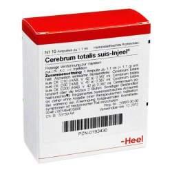 Cerebrum Totalis Suis Injeel 10 Amp.