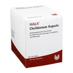 Chelidonium Wala 90 Weichkaps.