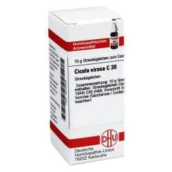 Cicuta virosa C30 DHU Glob. 10g