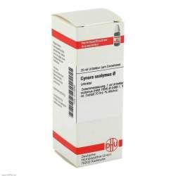 Cynara scolymus Urtinktur DHU Dil. 20 ml