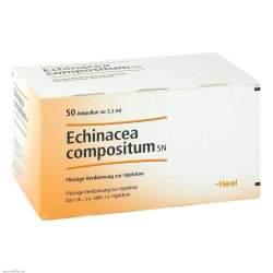 Echinacea compositum SN 50 Amp.