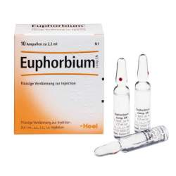 Euphorbium comp. SN 10 Amp. Fl. Verd. z. Inj.