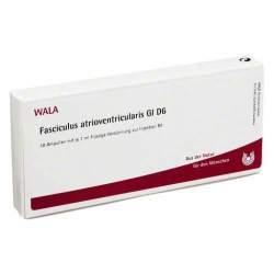 Fasciculus atrioventricularis Gl D6 Wala Amp. 10 x 1ml