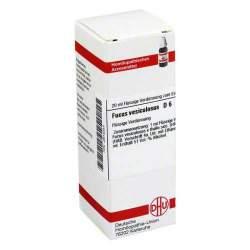 Fucus vesiculosus D6 DHU Dil. 20ml