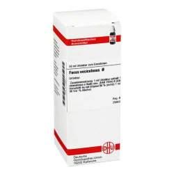Fucus vesiculosus Urtinktur DHU 50ml