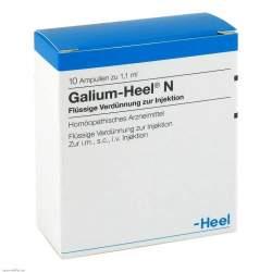 Galium Heel N 10 Amp.