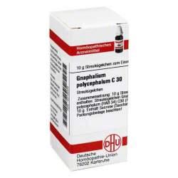 Gnaphalium polycephalum C30 DHU Glob. 10g