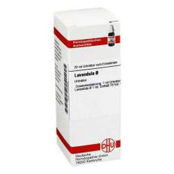 Lavandula Urtinktur DHU Dil. 20 ml