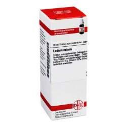 Ledum extern DHU Tinkt. 20 ml