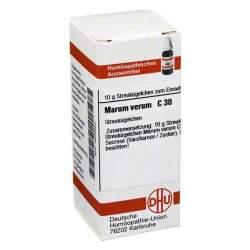 Marum verum C30 DHU 10g Glob.