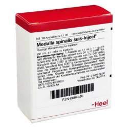 Medulla spinalis suis Injeel 10 Amp.