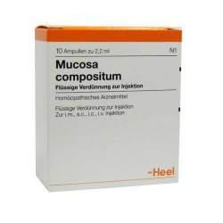 Mucosa compositum 10 Amp. Inj.-Lsg.
