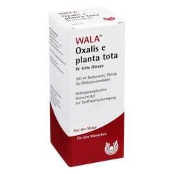 Oxalis E Planta tota W 10% Oleum 100ml