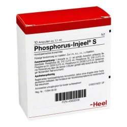 Phosphorus Injeel S 10 Amp.