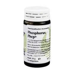 Phosphorus Phcp Glob. 20 g