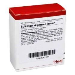 Solidago Virgaurea Injeel 10 Amp.
