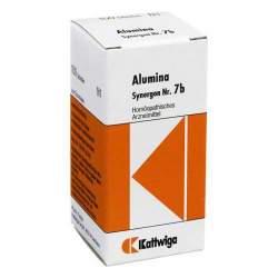 Synergon Komplex 7b Alumina 100 Tbl.