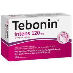Tebonin® intens 120mg 120 Filmtbl.
