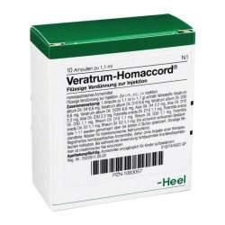 Veratrum-Homaccord® 10 Amp. Inj.-Lsg.